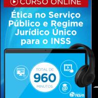 INSS 10