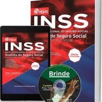 INSS 3