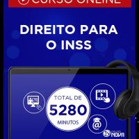 INSS 8